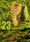 День защитника Отечества:33