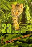 День защитника Отечества:34