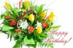 Happy birthday:56
