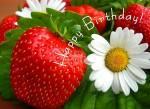 Happy birthday:62
