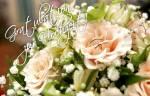 Zur Hochzeit:3