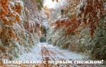 С первым снегом:15
