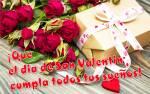 Día de San Valentín:24