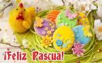 Pascua:23