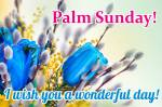 Palm Sunday:11