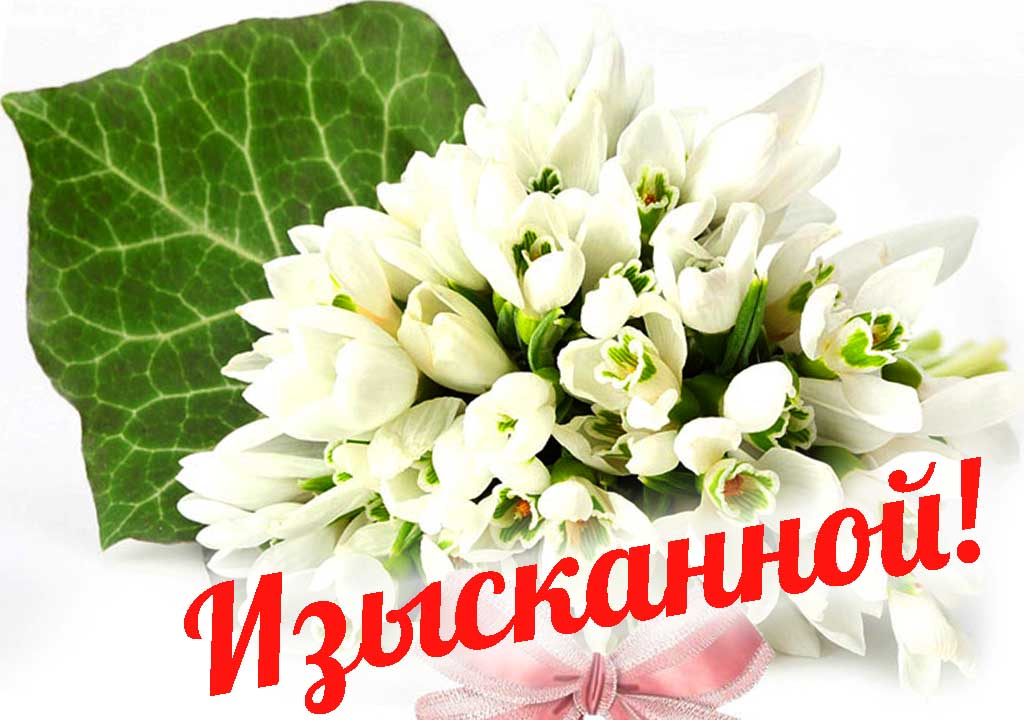 Поздравления