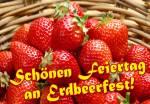 Erdbeerfest:2