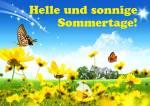 Der Sommer ist da!:2