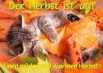 Der Herbst ist da!:2