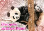 Der Winter ist da!:3