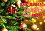 Feliz Navidad:9