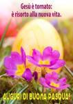 Pasqua:3