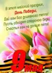 9 мая - День Победы:20
