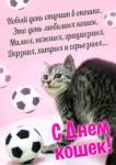 Всемирный день кошек:5