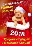 Новый год:5