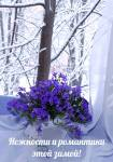 Зимние поздравления:4