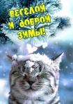 Зимние поздравления:13