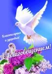 Благовещение Пресвятой Богородицы:9