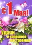 День весны и труда:9