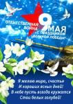 9 мая - День Победы:25