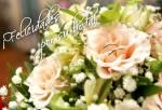 ¡Felicidades por su boda!:3