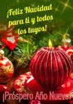 ¡Feliz Navidad!:28