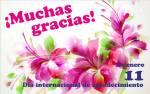 Día internacional de agradecimiento:1