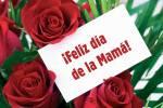 Día de la Madre:0