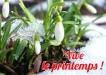 Le début du printemps:11