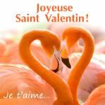 Saint Valentin:30