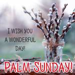 Palm Sunday:0