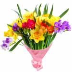 Frühlings-Blumensträuße:0