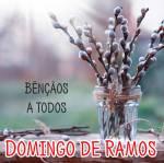 Domingo de Ramos:0