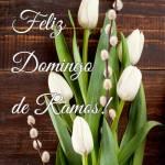 Domingo de Ramos:2