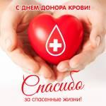 Всемирный день донора:0