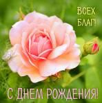 С Днем рождения - женские:100