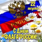 День флага России:2