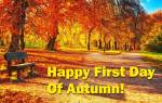 The beginning of autumn:5