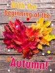The beginning of autumn:13