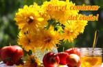 Principios de otoño:1