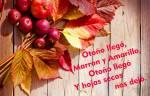 Principios de otoño:3