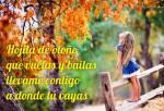Principios de otoño:4