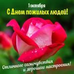 Международный день пожилых людей:1