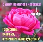 Международный день пожилых людей:4