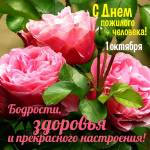 Международный день пожилых людей:6