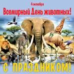 Всемирный день животных:1