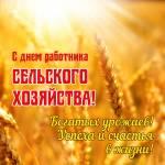 День работника сельского хозяйства:2