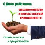 День работника сельского хозяйства:3