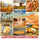 День работника сельского хозяйства:4