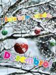 Dezembro Inverno:1